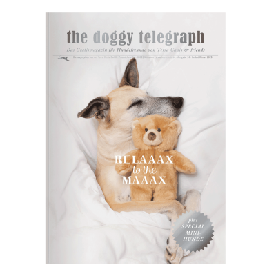 Doggy Telegraph Herbst/Winter 2020